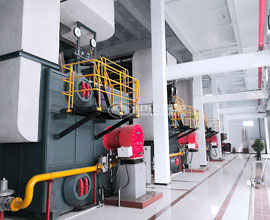 14MW SZS Condensing Gas Hot Water Boiler Project